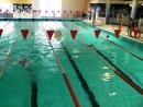 Zawody pływackie szkół podstawowych